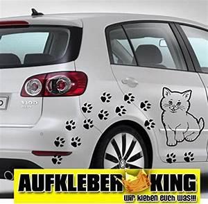 Transporter son chat en voiture : les prcautions prendre - Blog Site de tchat, chat et rencontre en ligne