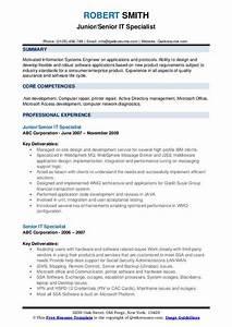 Senior It Specialist Resume Samples