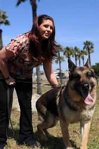 Marine Corps Military Police Megan Leavey Wikipedia