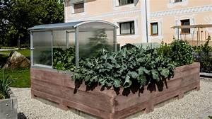 Hochbeet Für Garten : hochbeete aus beton frische ideen f r ihren garten ~ Sanjose-hotels-ca.com Haus und Dekorationen