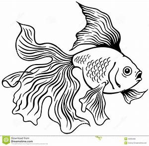 Goldfish black white stock vector. Illustration of shui ...