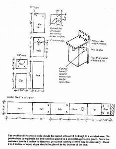 Building nice wood: Ideas Wood duck box predator guard plans