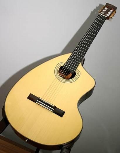 Acoustic Shaped Unusual Guitar Giannini Craviola Nylon