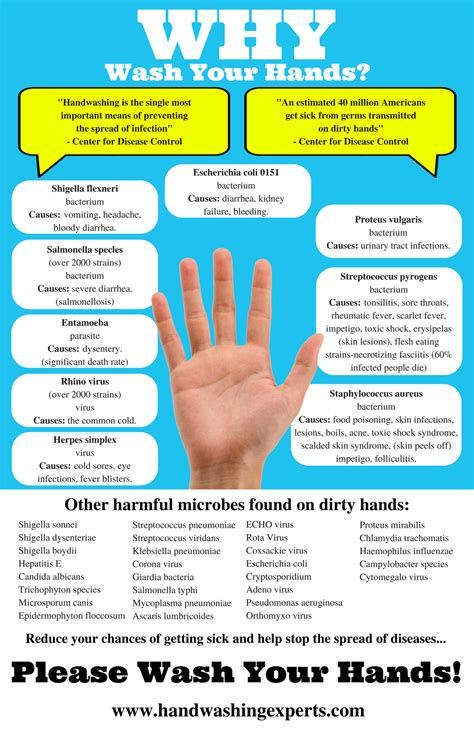 Why Wash Your Hands X24  Hand Washing Experts