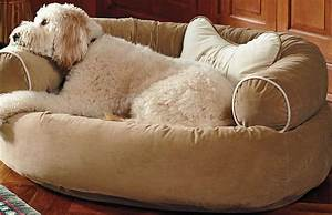 comfy couch pet bed dog beds dog and fur babies dog beds With big comfy dog beds