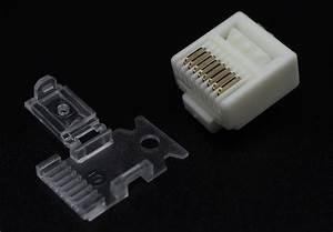 Cat 6 - Plug Master Industrial Co   Ltd   U4e7e U7f85 U79d1 U6280 U80a1 U4efd U6709 U9650 U516c U53f8