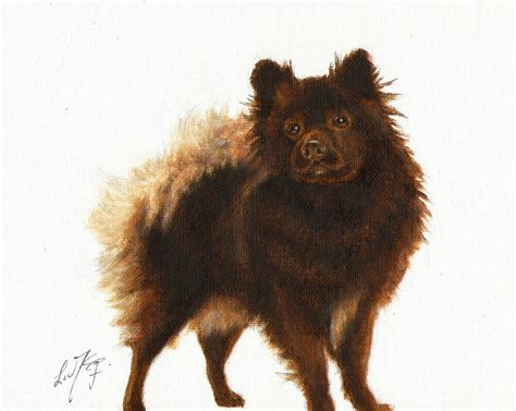 Original Oil Art German Spitz Portrait Painting Dog Artist