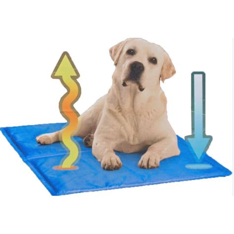 tapis rafrachissant pour chien tapis rafra 238 chissant cool pour chien pas cher