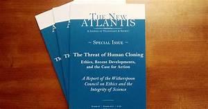Cloning Humans Essay Satellite Communication Term Paper Human  Human Cloning Essay Ielts