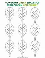 Spinach Coloring Mini sketch template