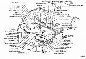 1989 Toyota Tercel Vacuum Diagram  Toyota  Auto Wiring Diagram