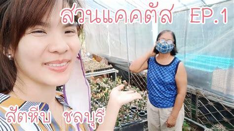สวนแคคตัส EP.1 สวนอาจารย์สุรางค์ สัตหีบ ชลบุรี - YouTube