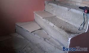 Recouvrir Marche Escalier : escalier b ton recouvrir de bois ~ Premium-room.com Idées de Décoration