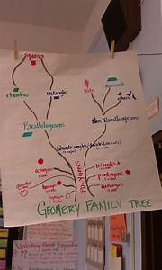 I Love This Geometry Family Tree Posted In A 4th Grade