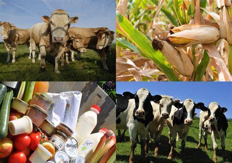 op駻a chambre d agriculture opportunités agricoles au stade dugauguez cd08 fr le site officiel des ardennes et des ardennais