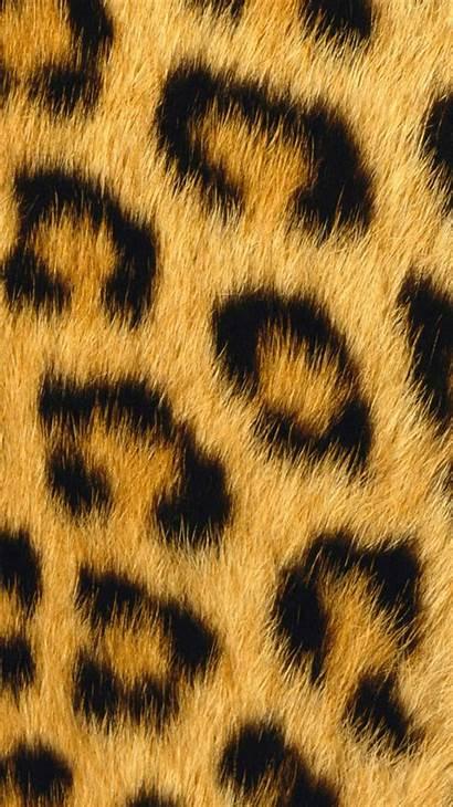 Iphone Wallpapers Leopard Backgrounds Designbolts Avante Biz