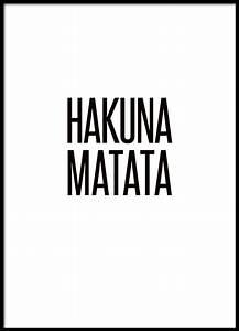hakuna matata posters sjove citater humoristiske