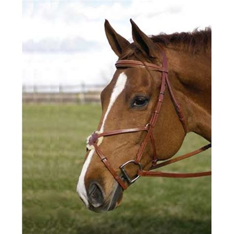 bridle figure hdr pro laced reins eight bridles