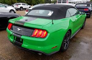 Need For Green 2019 Ford Mustang Ecoboost Convertible - MustangAttitude.com Photo Detail