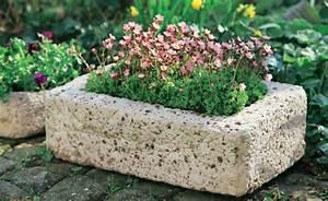 Pflanztröge Aus Beton : pflanzgef e aus beton selber machen auf den ersten blick natursteine und pflanzgef e ~ Sanjose-hotels-ca.com Haus und Dekorationen