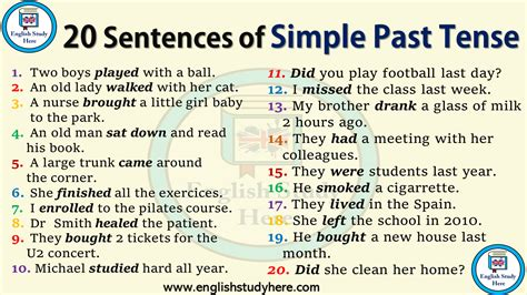 20 sentences in simple past tense study here