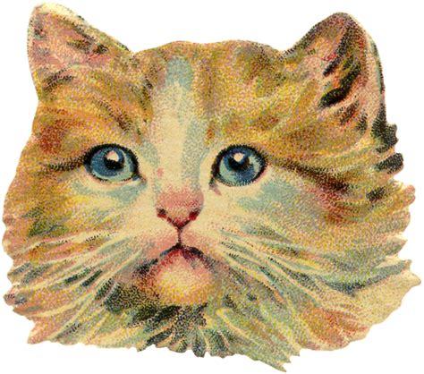 clipart cat 6 vintage cat images free scraps the graphics