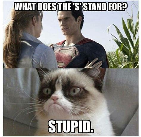 Grumpy Cat Meme - 26 funny angry cat memes for any occasion freemake