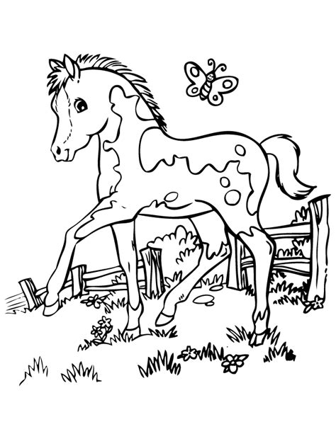 Coloring Horses Pages by Pretty Coloring Page H M Coloring Pages