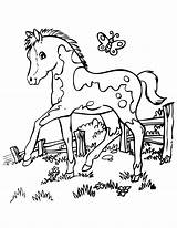 Coloring Horse Pages Printable Print Pdf sketch template