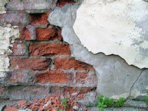 Ratten In Der Wand : ratten bek mpfen hausmittel gegen ratten im haus hausmittelhexe ~ Yasmunasinghe.com Haus und Dekorationen