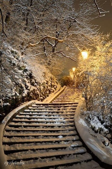 Christmas, Lights, Pretty, Snow, Stairs  Image #3797171