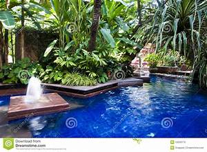 Tropical Swimming Pool Stock Photo - Image: 10240170