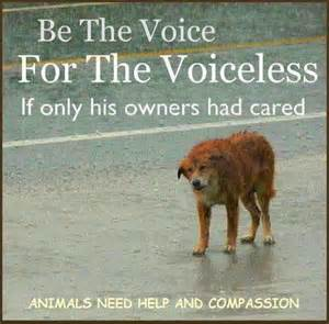Be a Voice for the Voiceless Animals