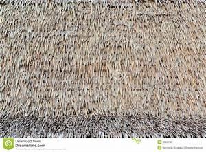Toit En Paille : texture de toit de chaume photographie stock image 32933182 ~ Premium-room.com Idées de Décoration