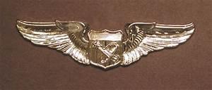 Civilian Astronaut Wings Emblem (page 3) - Pics about space