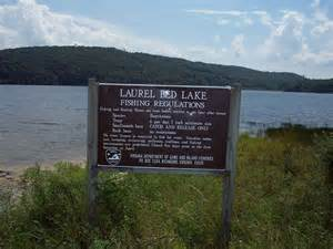 panoramio photo of laurel bed lake fishing regulations