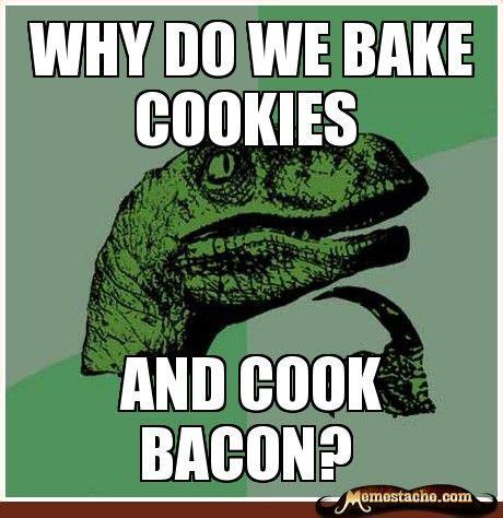 Thoughtful Memes - philosoraptor meme funny memes pinterest