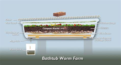Backyard Worm Farm by March 2012 The Epilogist
