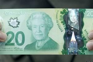 Canada $20 Bill Uses Wrong Maple Leaf Emblem, Botanist ...