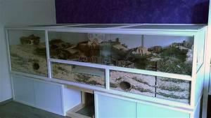 Aquarium Selber Bauen Plexiglas : wie und womit kann man g nstig ein hamster terrarium selber bauen zwerghamster ~ Watch28wear.com Haus und Dekorationen