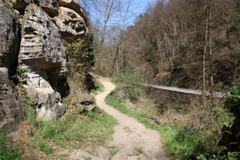 location chaise roulante luxembourg mullerthal photo de mullerthal trail mullerthal