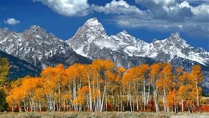 Mountain Fall Standard