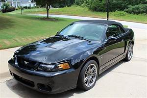 2003 Ford Mustang SVT Cobra 10th Anniversary Wallpapers | MustangSpecs.com