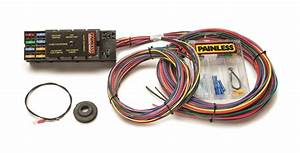 Painless Wiring 50001 This 10 Circuit Race Only Harness