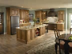 oak cabinet kitchen ideas oak kitchen cabinet ideas decormagz pictures new color