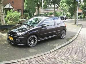 Peugeot Somain : vegnagun s3 2002 peugeot 206 specs photos modification info at cardomain ~ Gottalentnigeria.com Avis de Voitures