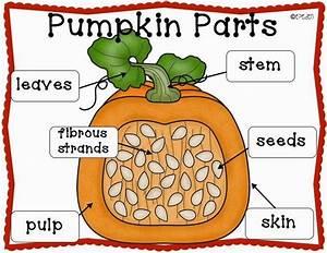 A Neighborhood Kindergarten   Pumpkin Patch Ccss Math