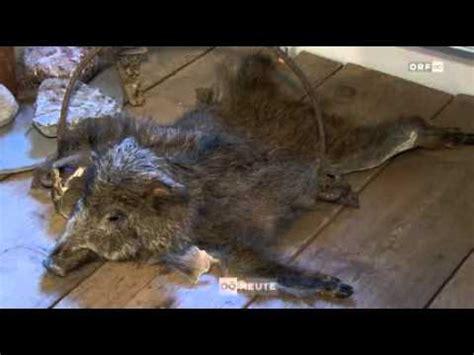 wildererdrama von pius walder im wilderermuseum st