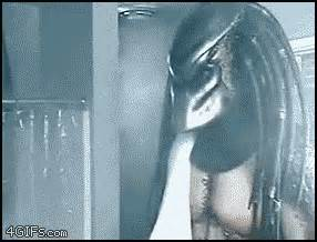 geeky animated gif monday alien vs predator shower