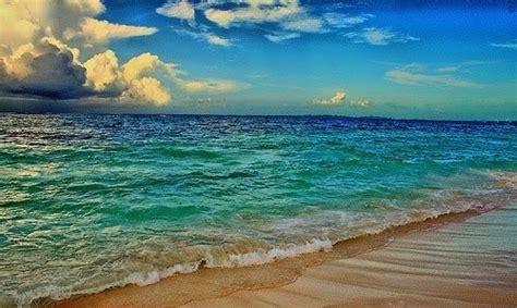 Amazing Beach Ocean Scene  Scenery And Animals Pinterest